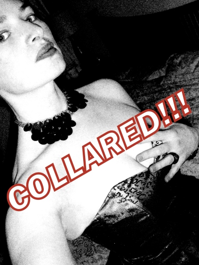Now accepting testers for COLLARED!!!