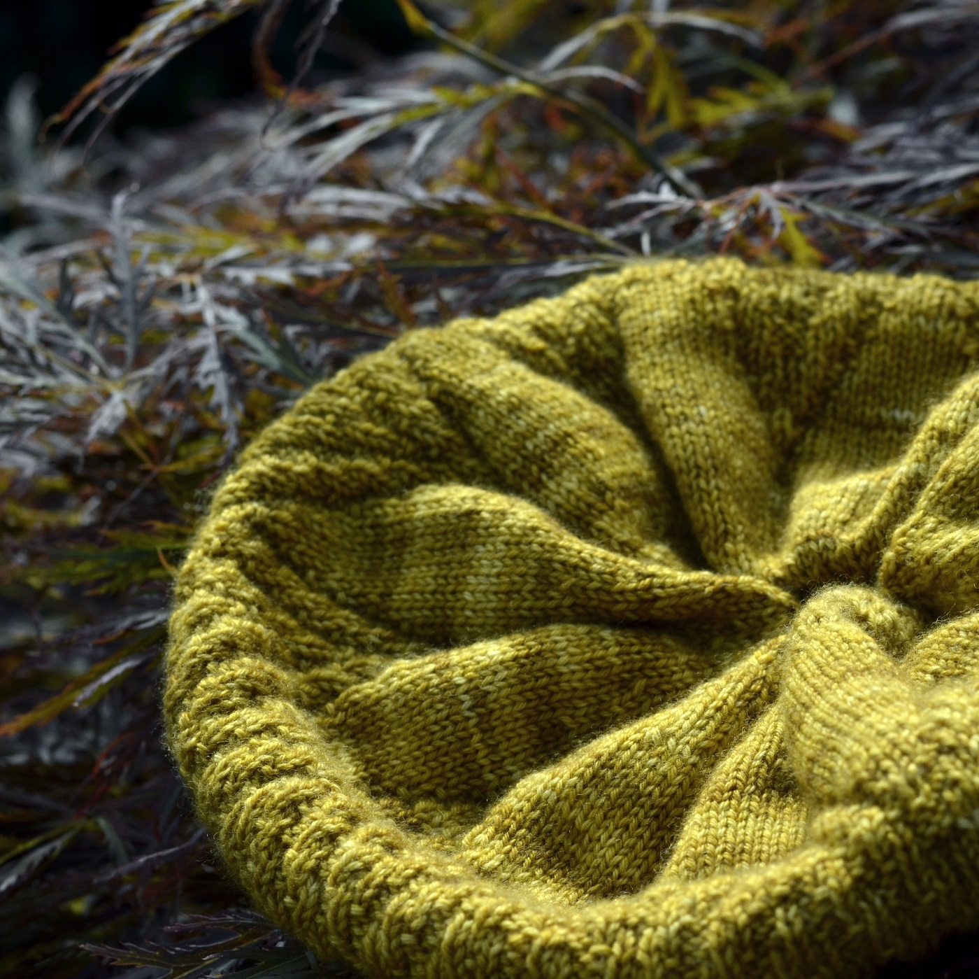 Would you like to Test Knit my Corona Beret? – Catching Loops